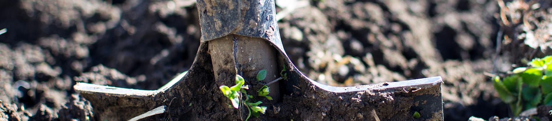 Spade digging up soil