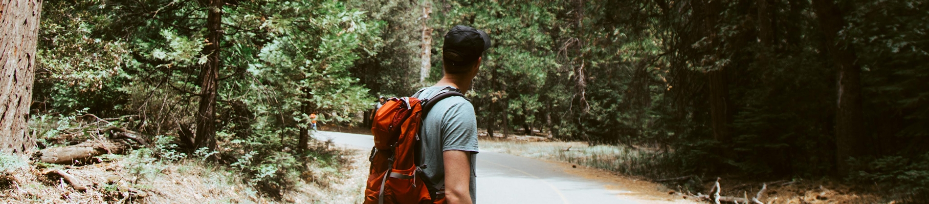 A man wearing a rucksack looking back on a road leading to trees