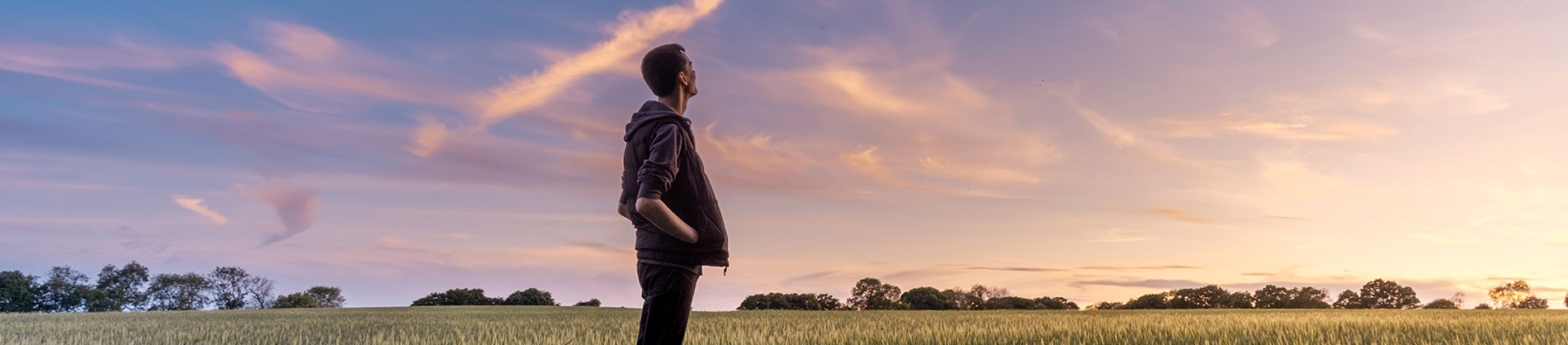 A man stood in a field looking up to a sunset sky