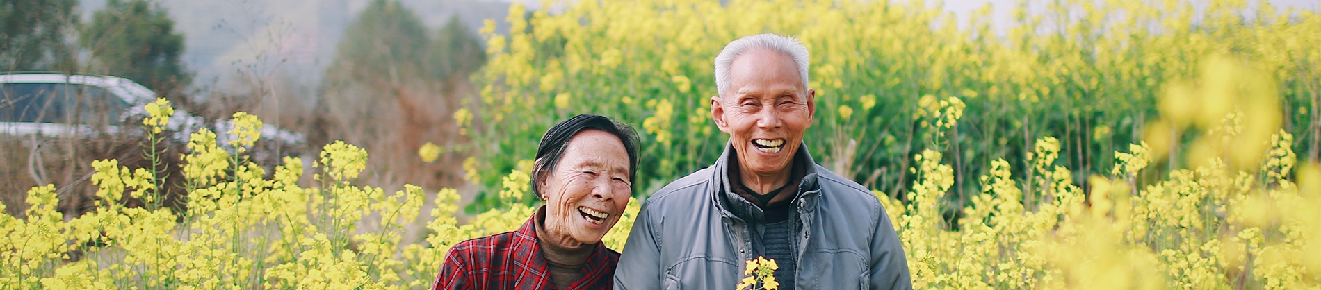 Two elderly people walking through a field of flowers