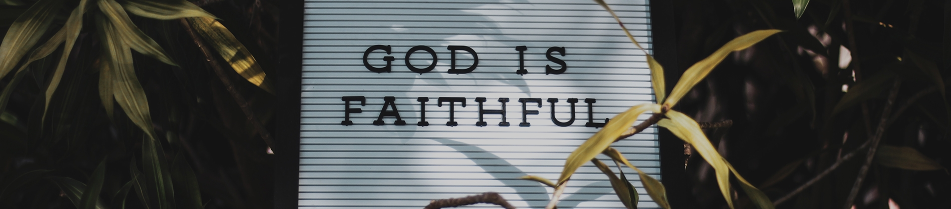 A sign saying 'God is faithful' leaning against some plants