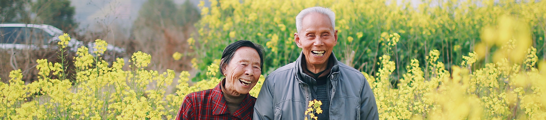 Two elderly friends walking through yellow flowers
