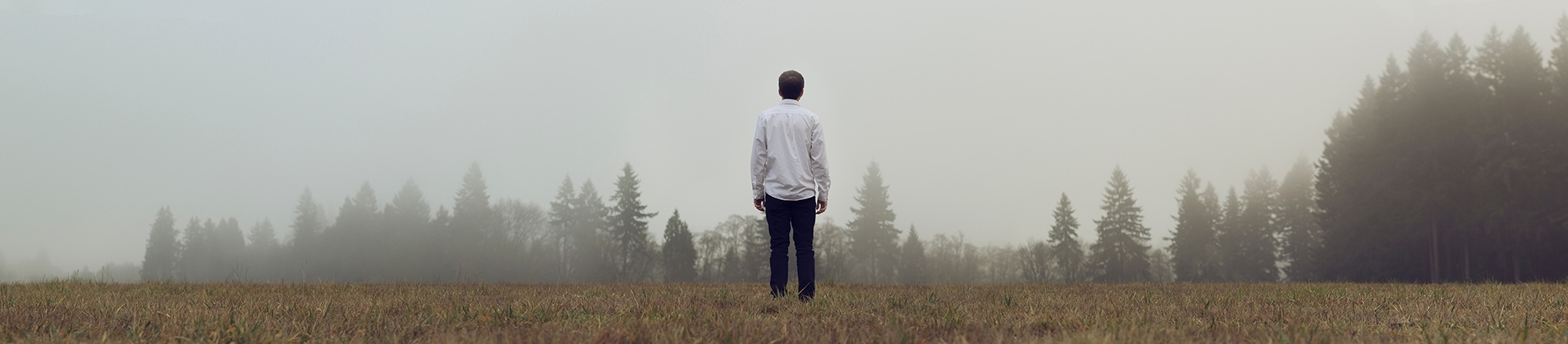 A man in a white shirt stood in a field looking towards misty trees in the distance