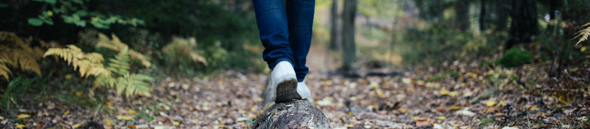 A person walking along a fallen tree trunk