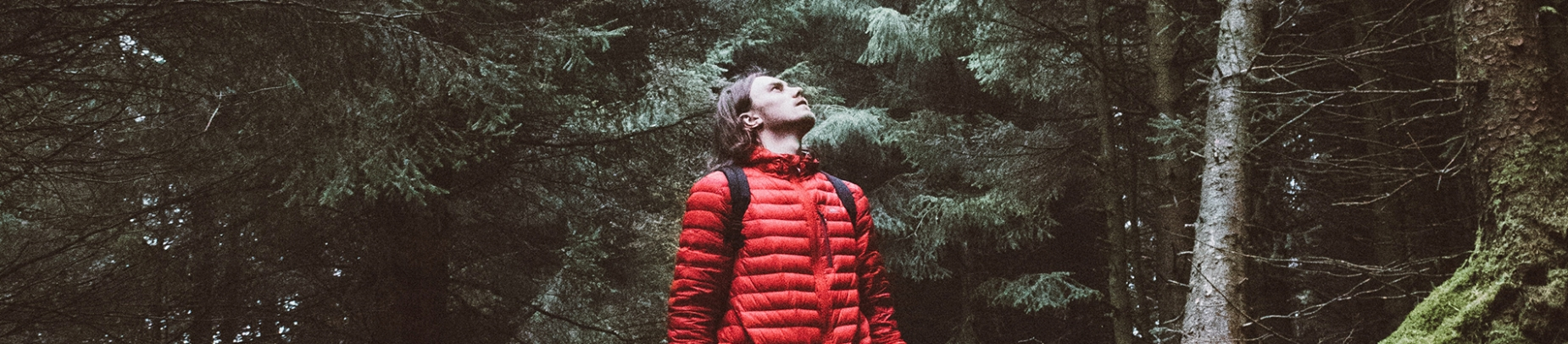 A man in a red coat stood in a forest looking up to the sky