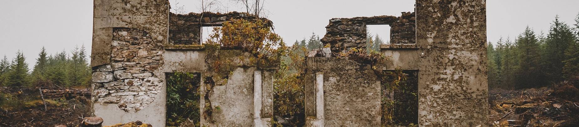 Ruined building with a forest behind