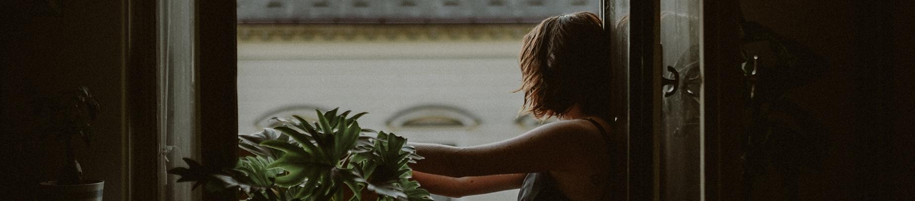 A women sat in a open window looking out