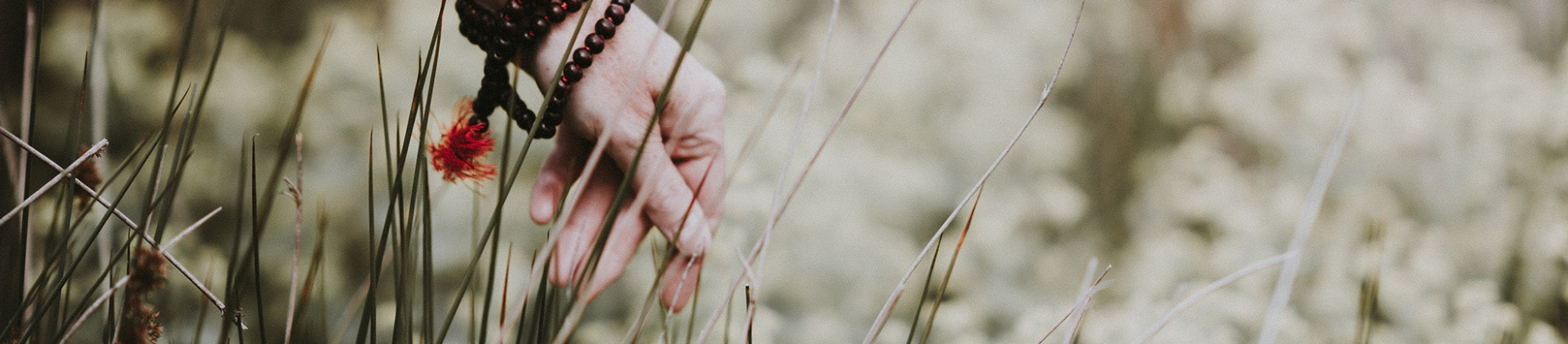 A man brushing his hand across long grass