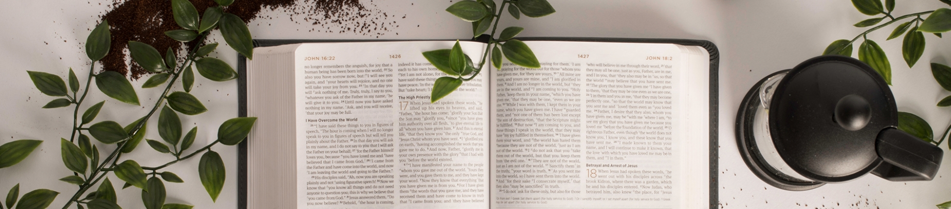 Open Bible with plants, a coffee jug and soil surround it