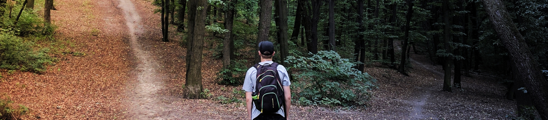 A man stood in a forest looking at two paths in front of him