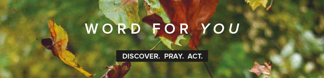 Word For You - August, September, October